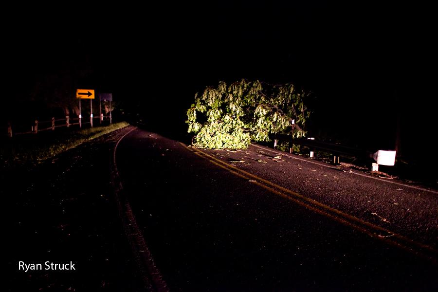 fallen trees. new jersey fallen trees. new jersey power outage. hurricane irene damage.