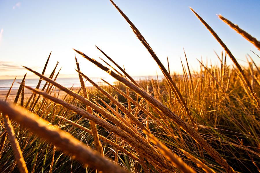 fall. autumn. sunrise photo. lifestyle photographer. lifestyle photography. new jersey surf.