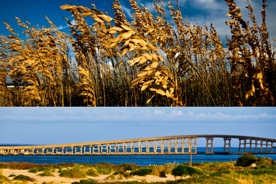 autumn. fall. seasonal. weather. bonner bridge. obx. outer banks. beach photo.