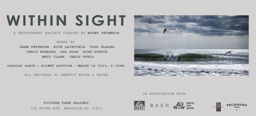 within sight. ryan struck photo. photo show. brooklyn surf. surf photo show. waves for water.