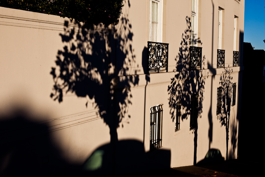 shadows. street photo. trees. architecture. california. san Francisco