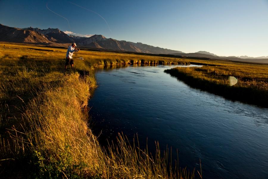 fishing california