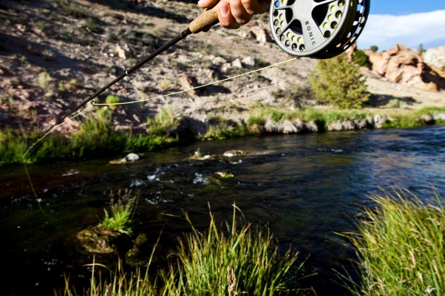 fly fishing photographer