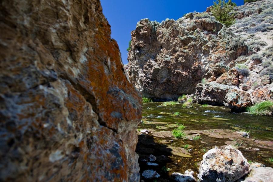 Fly fishing Eastern Sierras in California along the Upper Owens River